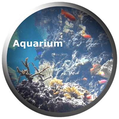 Aquarium Videos 2.3