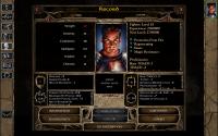 Baldur's Gate 2: Enhanced Edition for Mac