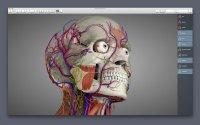 Essential Anatomy 5.0