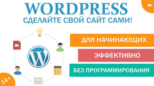 Wordpress сделайте свой сайт сами (2014)
