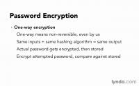 Основы программирования: Веб-безопасность (2014)