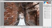 Видеоурок по тонированию свадебной фотографии (2013)