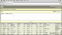Основы SQL/SQL Essential Training (2014)
