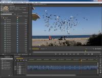 Видеомонтаж за 10 дней (2014)