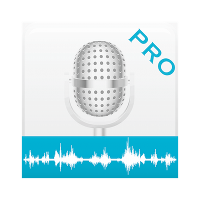 Voice Notes Pro 4.1