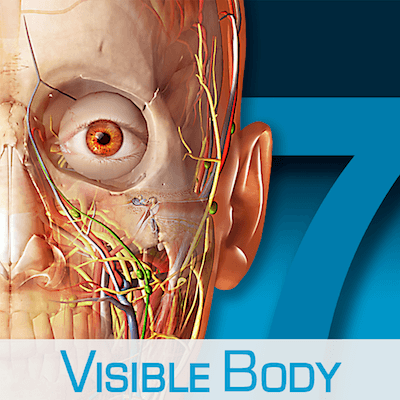 Human Anatomy Atlas 7.4.01
