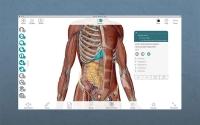 Human Anatomy Atlas 7.4.01