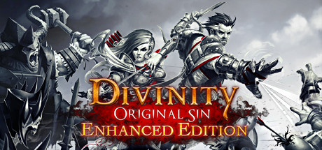 Divinity: Original Sin - Enhanced Edition (2015)