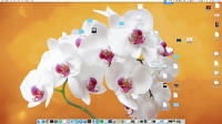 Hide Desktop Files 1.0