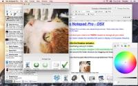 iDo Notepad Pro 1.0