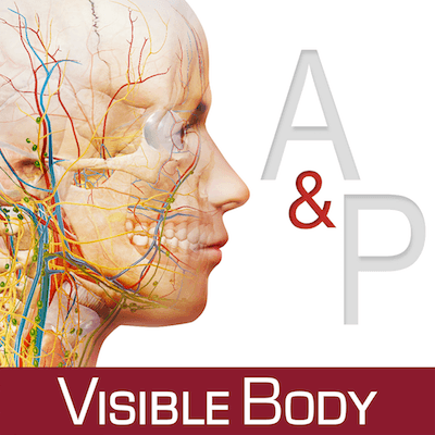 Anatomy & Physiology 3.0.17