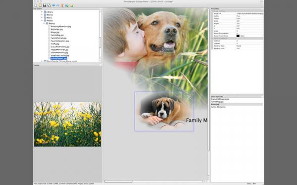 PhotoTangler 1.1