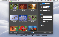 iFoto Converter 2.2